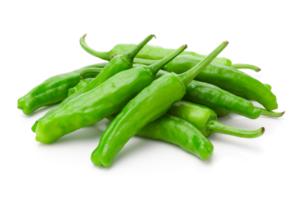 sweet green pepper