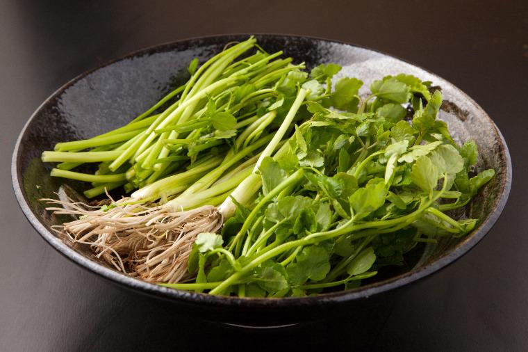 japanese-parsley